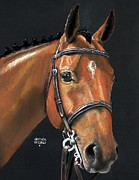 Bay Horse Metal Prints - Miner Metal Print by Heather Gessell