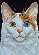 Cat Portraits Framed Prints - Minette Framed Print by Ditz
