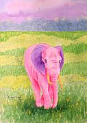 Tusk Paintings - Mingo Rose by Rhonda Leonard