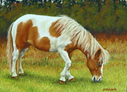 Paint Pastels Framed Prints - Mini Mare Pastel Framed Print by Margaret Stockdale