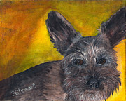 Mini Schnauzer Puppy Prints - Mini Schnauzer With Big Ears Print by Penny Stewart