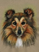 Cute Pastels Framed Prints - Miniature Collie Framed Print by Val Stokes