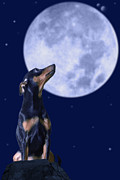 Pinscher Prints - Miniature Pinscher And Moonlight Print by Christian Lagereek