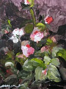 Susan Jones - Miniature Roses