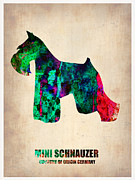 Puppy Digital Art Prints - Miniature Schnauzer Poster 2 Print by Irina  March