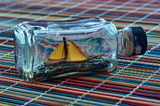 Toy Boat Posters - Miniature ship in a bottle Poster by Berkehaus Photography