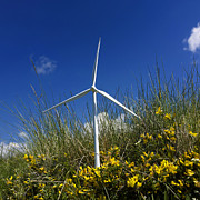 Color Yellow Posters - Miniature wind turbine in nature Poster by Bernard Jaubert