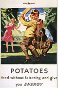Government Drawings Acrylic Prints - Ministry Of Food 1940s Uk Potatoes Acrylic Print by The Advertising Archives
