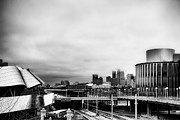 Minneapolis From The University Of Minnesota Print by Tom Gort
