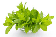 Herbs Posters - Mint sprigs in bowl Poster by Elena Elisseeva