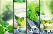 Mythja Prints - Mint tea collage Print by Mythja  Photography