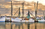 Shrimp Boat Prints - Miss Hale Shrimp boat Print by Scott Hansen