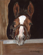 Foal Paintings - Miss Me by Linda Shantz