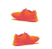 Shoe Originals - Missing by Adam Younk