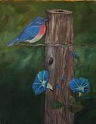 DG Ewing - Missouri Blue Bird II