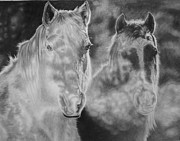 Horses Drawings Prints - Mist Print by Glen Powell