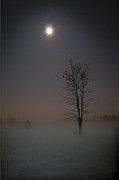 Scott Hupertz - Mist in the Moonlight