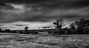 Mark Lucey - Mist on the Plains