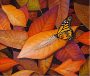 Monarch Butterfly Paintings - Mistaken Identity  butterfly on leaves by John Samsen