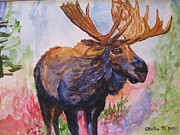 Stella Sherman Prints - Mister Moose Print by Stella Sherman
