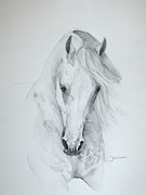 Horses Posters Painting Posters - Misterioso 2 Poster by Janina  Suuronen
