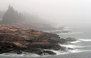 Misty Acadia National Park Seacoast Print by Juergen Roth