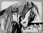 Pen And Ink Drawing Drawings - Misty and Jet by Cheryl Poland