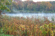 Willow Lake Posters - Misty Autumn Morning Poster by Deborah Smolinske