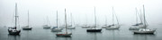 Boats In Harbor Framed Prints - Misty boats in harbor Framed Print by Mike Nellums