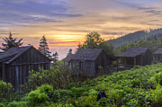 Mountain Cabin Prints - Misty Dawn at Mt Le Conte Print by Debra and Dave Vanderlaan