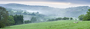 Misty Hills Farm Photos - Misty dawn in Wales by Derek Croucher