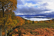 Misty Day In The Cairngorms II Print by Louise Heusinkveld