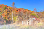 Sheds Posters - Misty Fall Morning In The Valley - North Georgia Poster by Mark E Tisdale