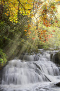 River Scenes Prints - Misty Falls at Coker Creek Print by Debra and Dave Vanderlaan