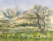 Budding Tree Prints - Misty Flatirons Print by Anne Gifford