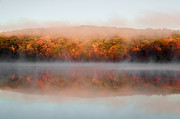 Changing Colors Prints - Misty Foilage Print by Anthony Sacco