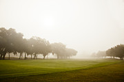 Fog At Sea Framed Prints - Misty Golf Course II Framed Print by Barbara Marie Kraus