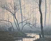 Peter Mathios Posters - Misty Hideaway -  Wood Duck Poster by Peter Mathios