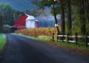 Barn Digital Art - Misty Lavelle by Lori Deiter