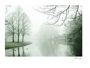 Fog On Water Framed Prints - Misty Morning 9 Framed Print by Xoanxo Cespon
