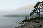 Argyll And Bute Prints - Misty morning  Print by Gary Eason