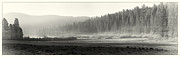 Early Photo Prints - Misty morning in Yosemite Sepia Print by Jane Rix