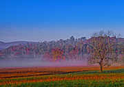 Dave Bosse - Misty Mountain Morning
