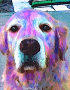 Dog Pop Art Paintings - Misty by Robin Mead