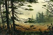 James Williamson - Misty Tideland Forest