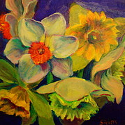 Ruth Sievers - Mixed Daffodils