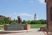 Universities Art - Mizzou Tiger Plaza by Kay Pickens