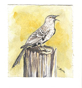 Mockingbird Paintings - Mockingbird by Callie Smith