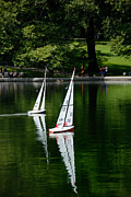 Race Framed Prints - Model Boats Central Park New York Framed Print by Amy Cicconi