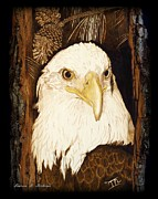 Bald Eagle Pyrography Framed Prints - Moes Eagle Framed Print by Laurisa Borlovan